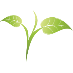 Green_leaf_05