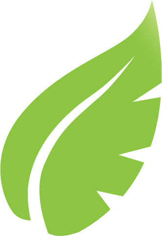 Leaf Icon 01
