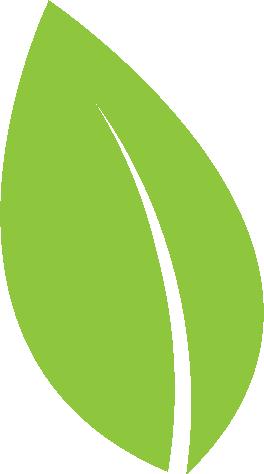 Leaf Icon 02