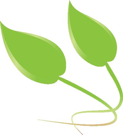 Leaf Icon 03