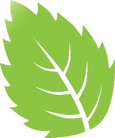 Leaf Icon 04