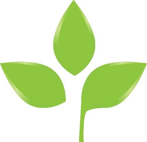 Leaf Icon 08